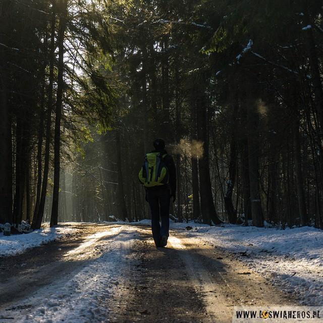 W poszukiwaniu zimy, czyli z wizytą na #Podlasie. A co mają wspólnego Chińczycy z żubrami? To już w najnowszym poście na blogu... #Białowieża #Hajnówka #żubry #podróże #zima #winter #Poland #travel #bison #deer #forest #Polska #przygoda #namiot