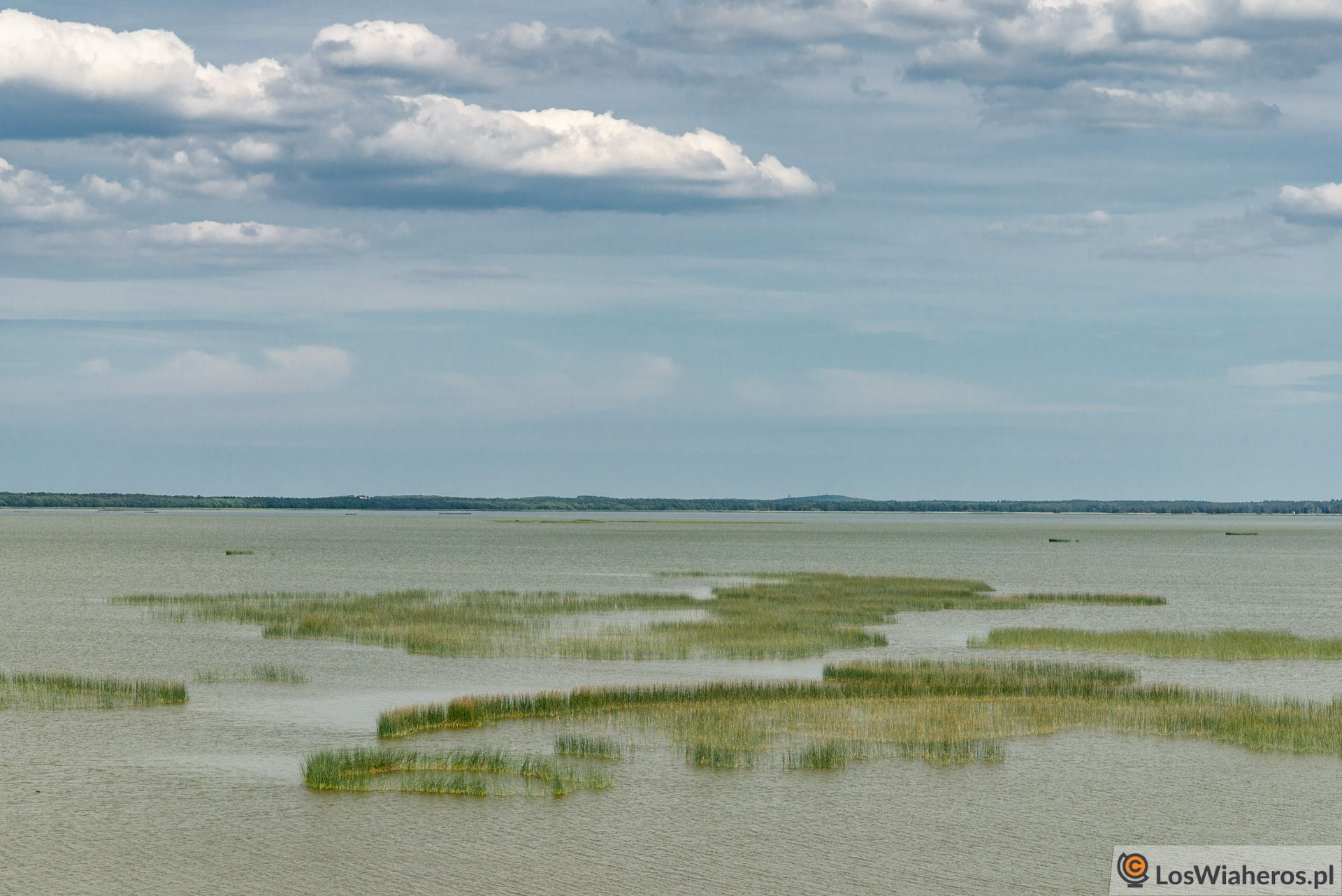 Południowo-zachodnia strona Jeziora Gardno, atym samym granica Słowińskiego Parku Narodowego - widok zwieży widokowej koło Rowów.