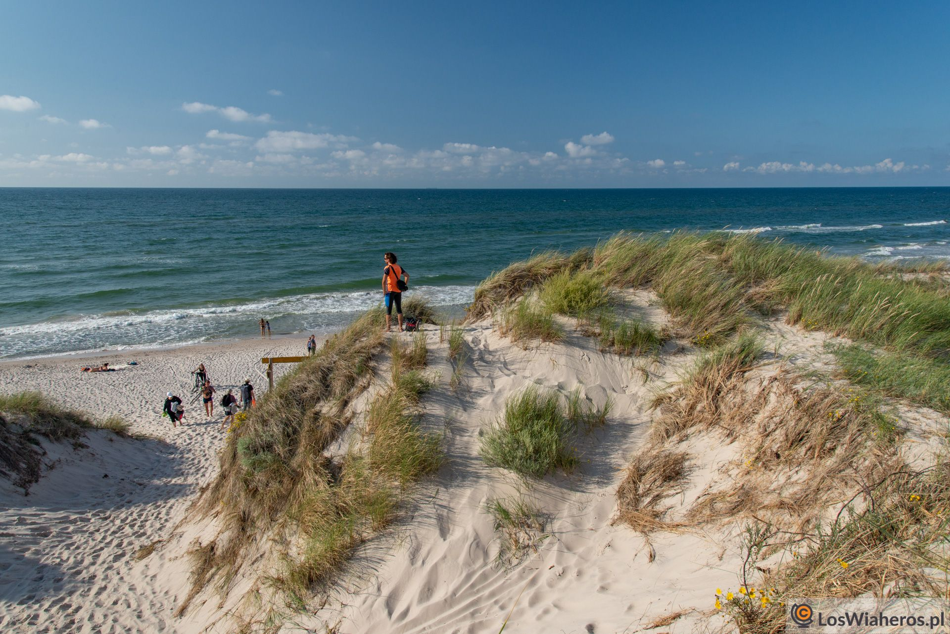 Plaża wCzołpinie