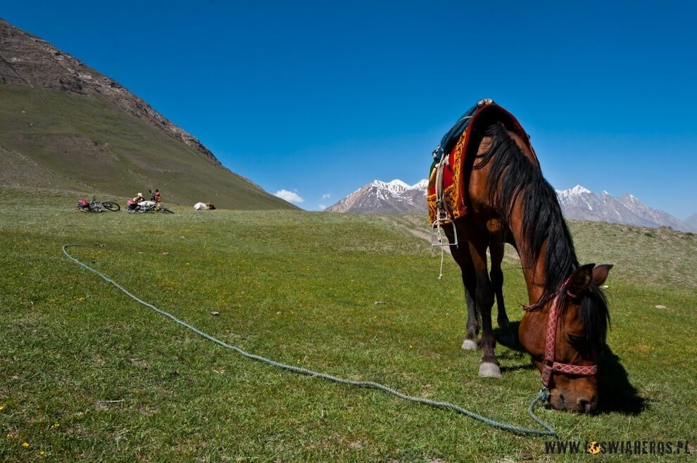 Konie traktuje się wWachanie zdużym szacunkiem.
