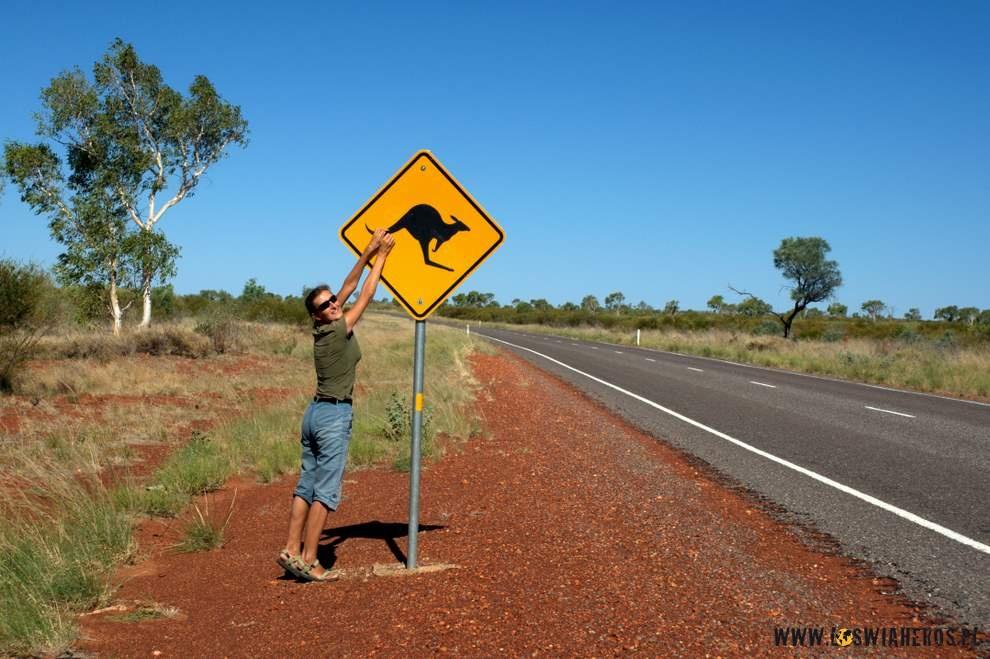 Australijska klasyka - kangurze znaki drogowe ;)