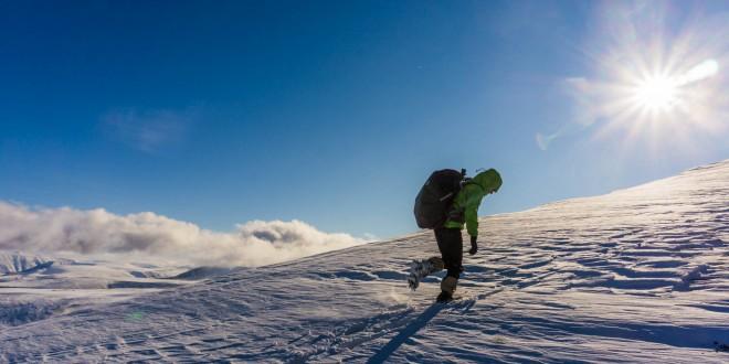 arktyka_spitsbergen_tundra-03821