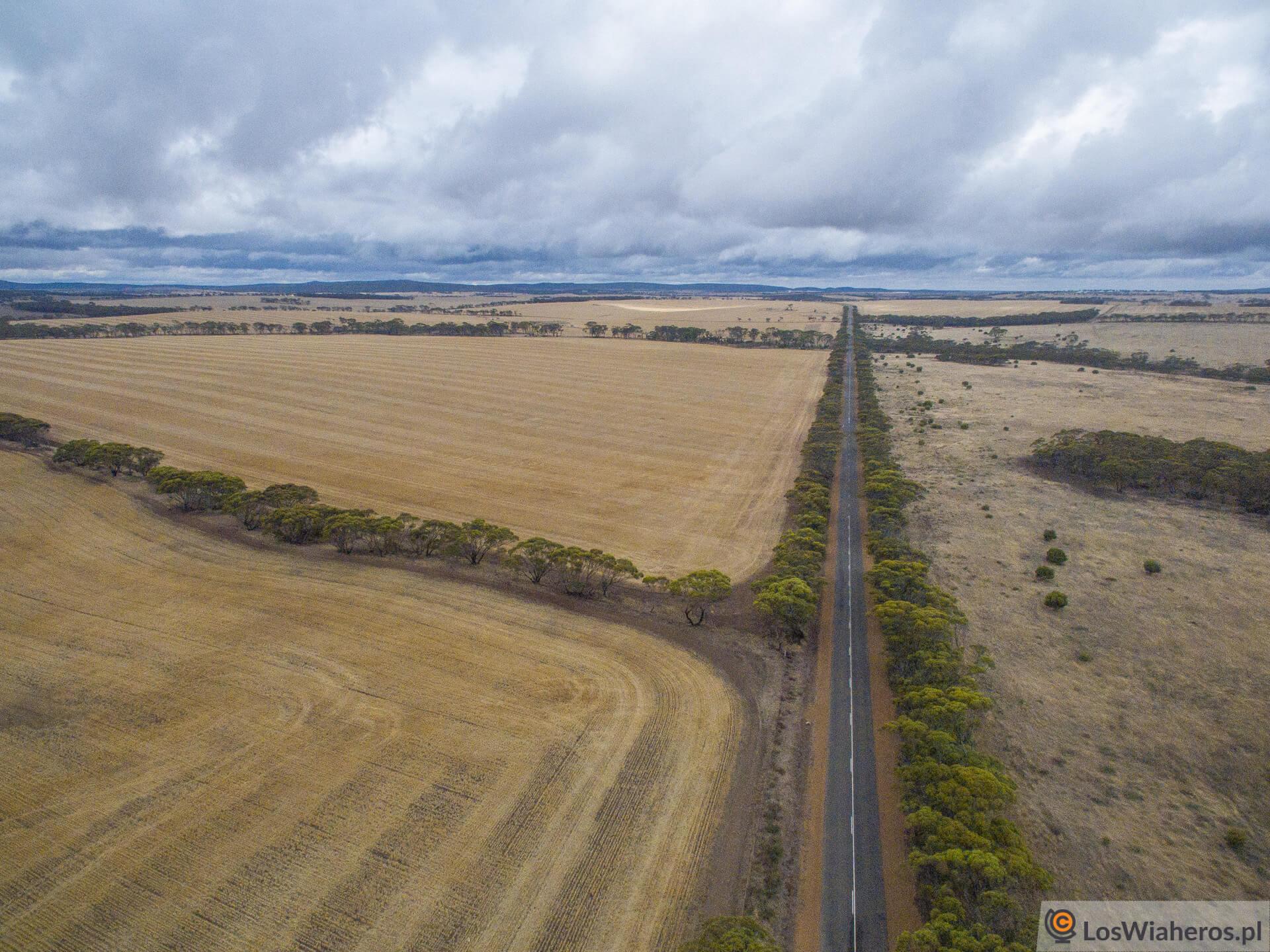 Południe Australii Zachodniej farmami stoi.