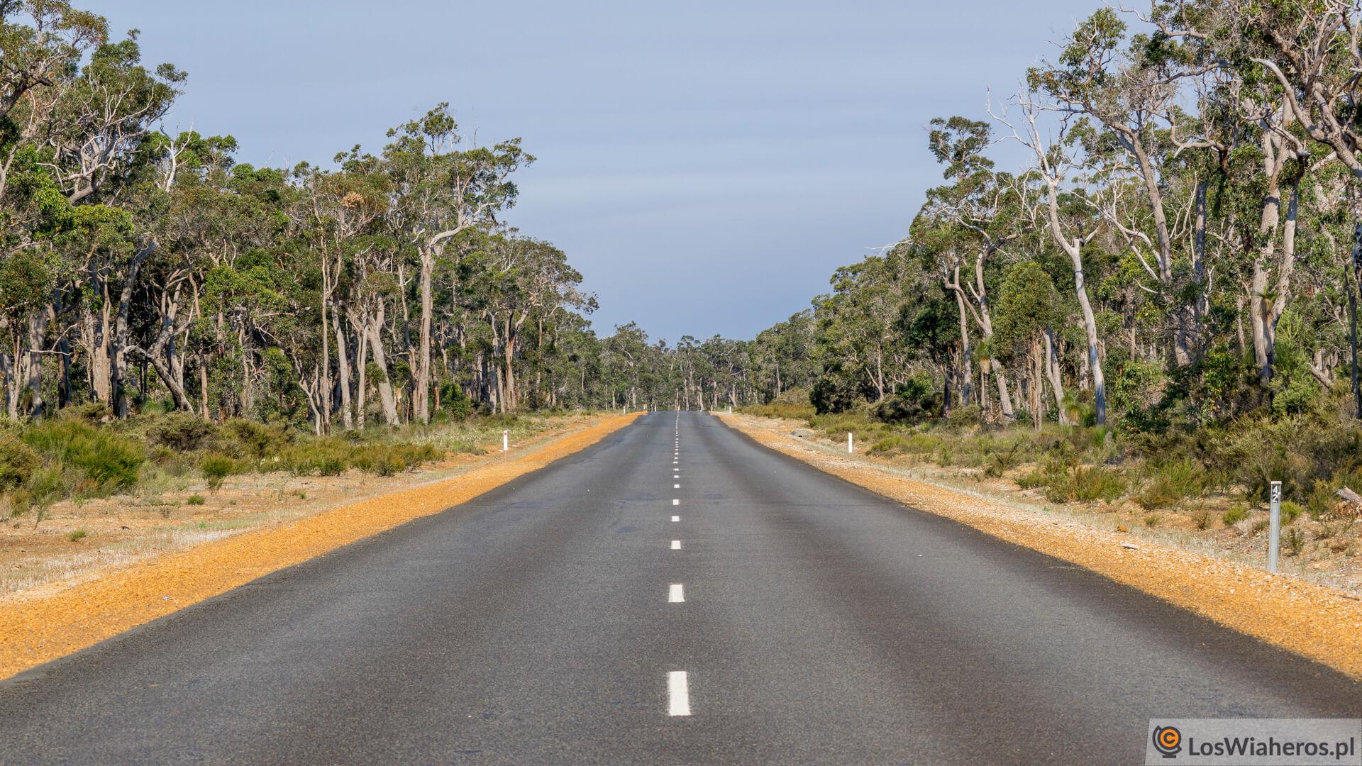 Nie wiadomo, co przyniesie droga za kilkadziesiąt kilometrów. Tutaj ładnie i spokojnie, żeby za chwilę...