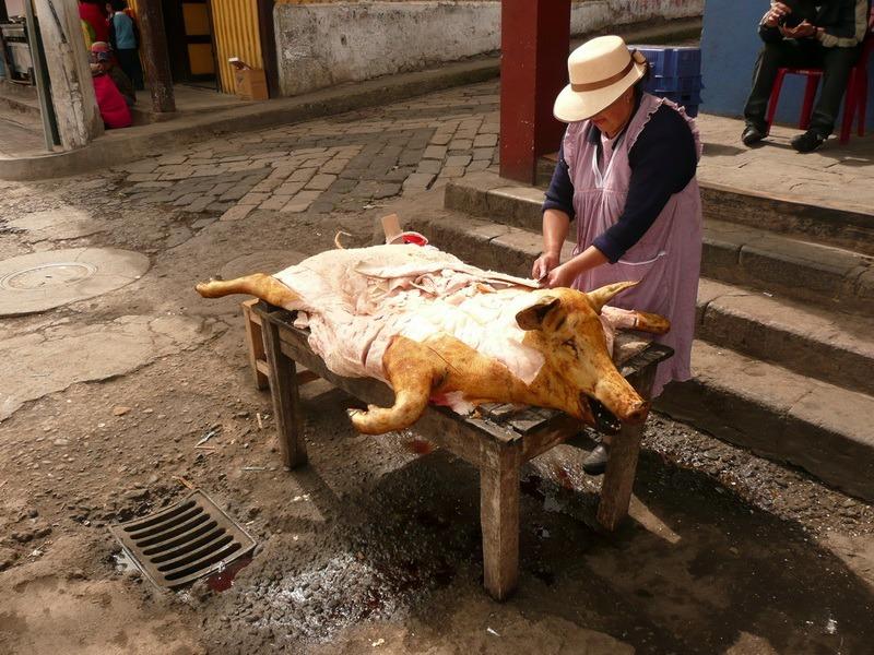 ekwador_nariz_del_diablo_P1000680