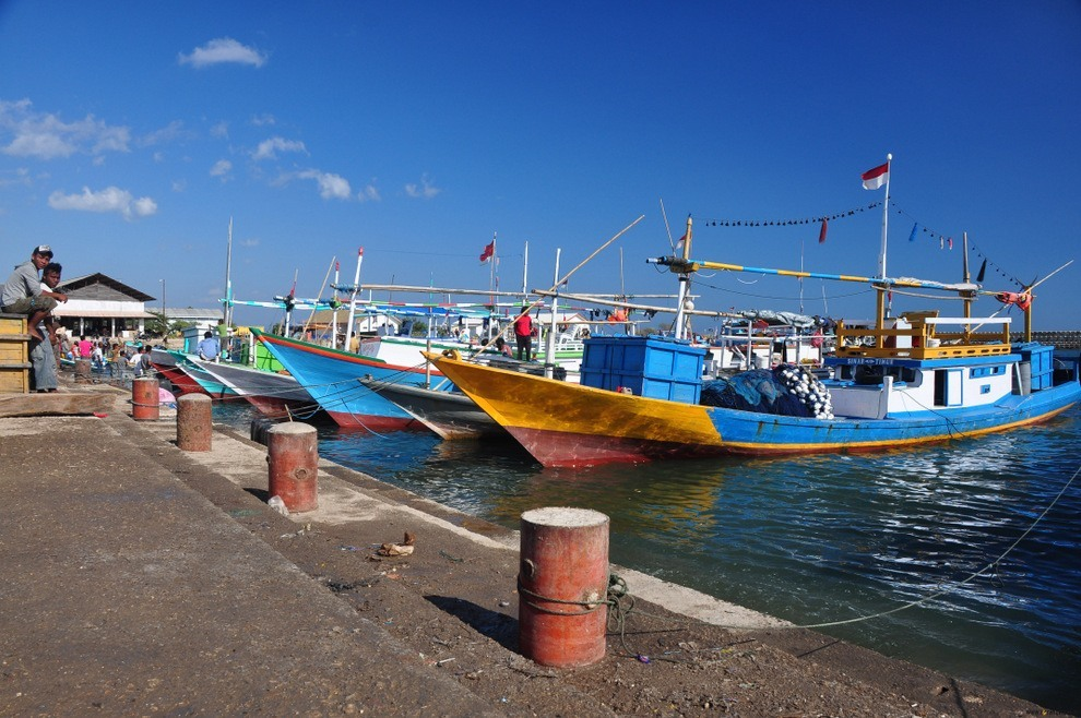 Targ rybny w Kupangu