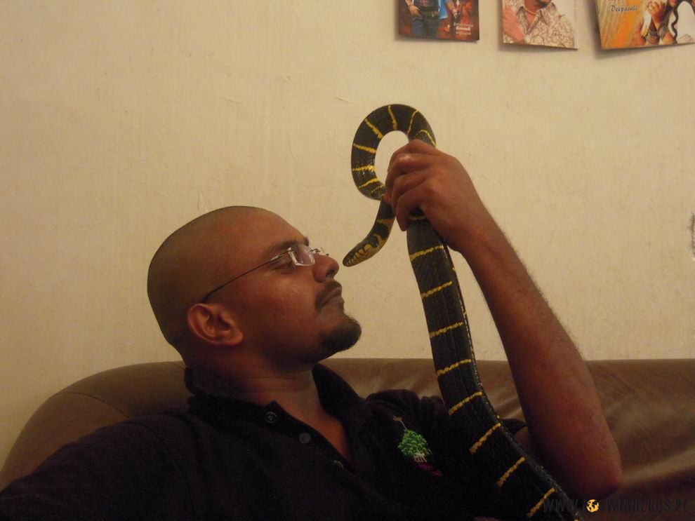 Jeeva całuje swojego węża mangrowcewego!