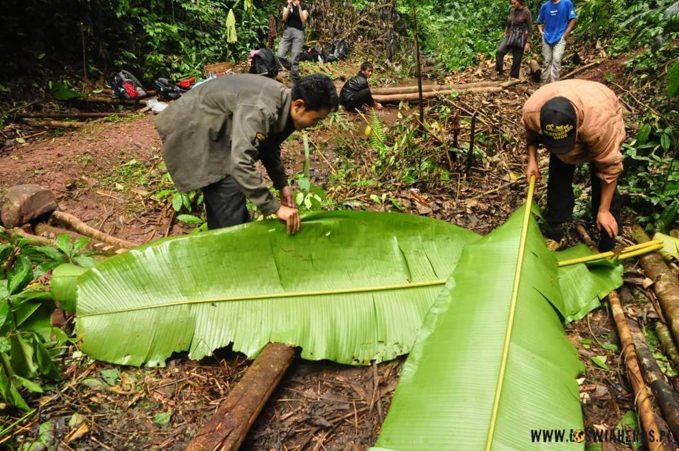 Liście bambusowe służą jako stół.