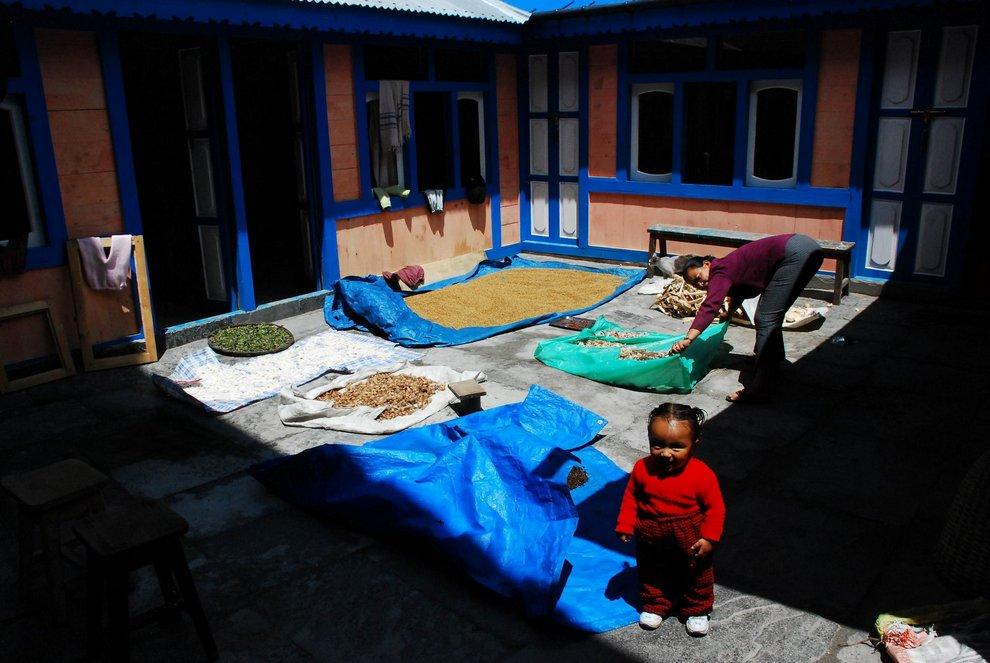 nepal_trekking_annapurna_DSC_7876