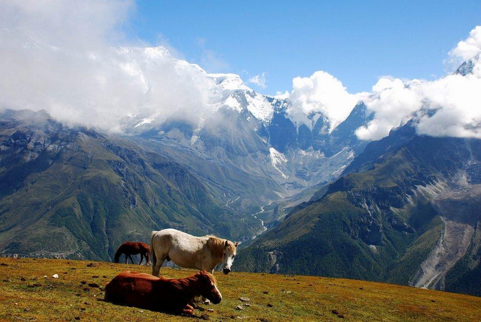 nepal_trekking_annapurna_DSC_8094