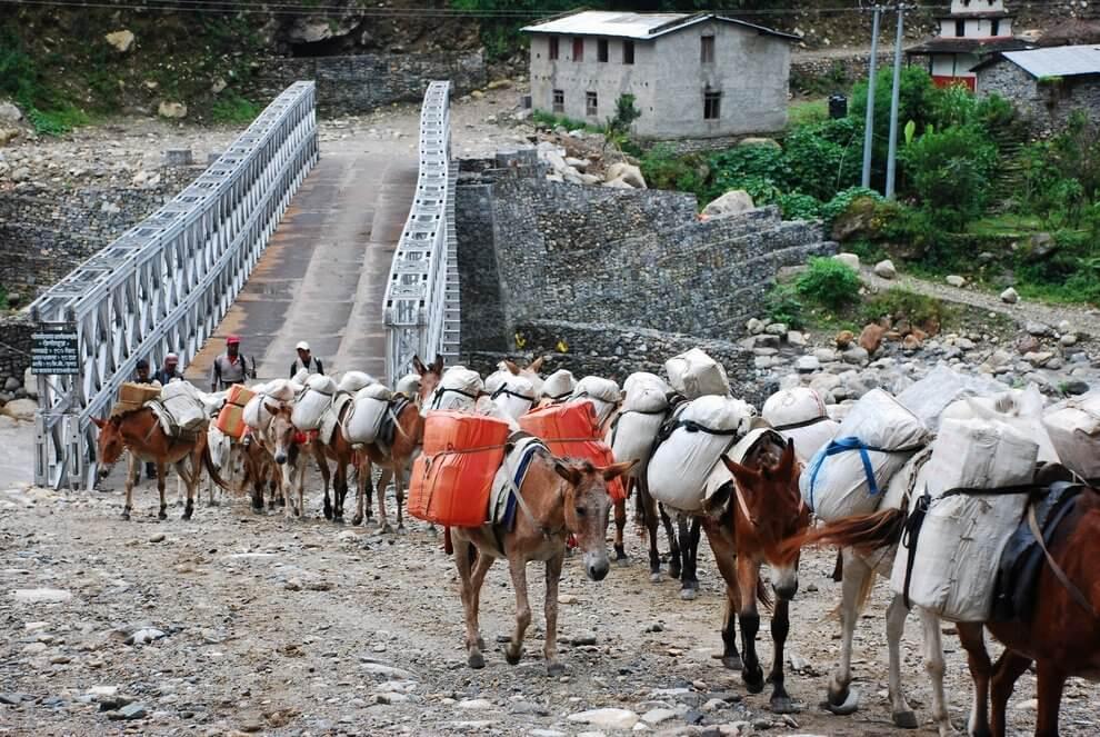 nepal_trekking_annapurna_DSC_8539