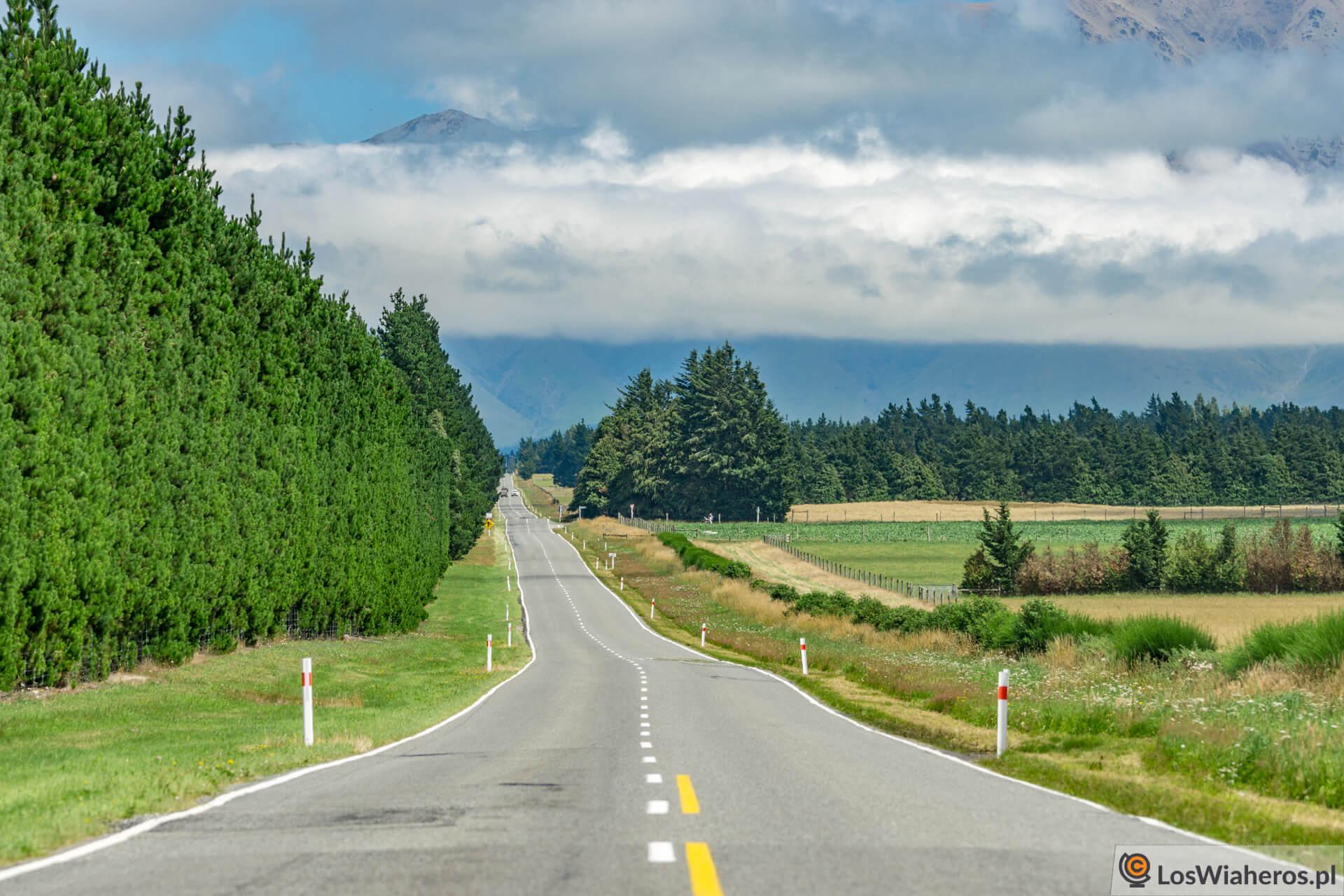 Drogi w Nowej Zelandii jak podjazdy do ogrodów!