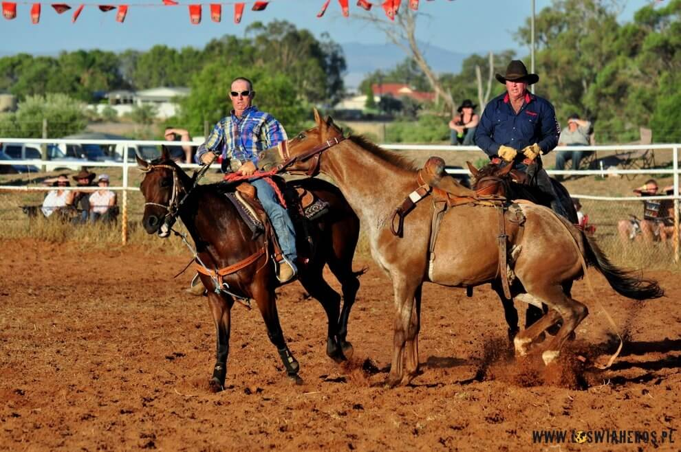 Pick up men - australian rodeo.