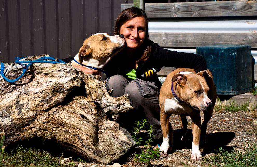 Alicja i psy, którymi opiekowaliśmy się przez 3 tygodnie w Australii Południowej.