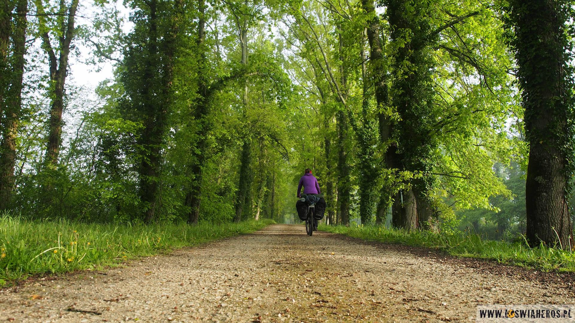 Samotna wycieczka wzdłuż dzikiej Loary