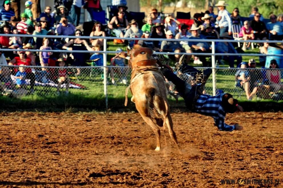 Saddle bronc riding, czyli ujeżdżanie konia wsiodle.