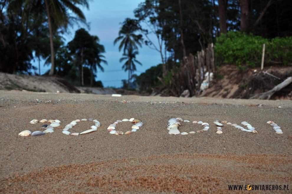 Świętujemy 300 dni wdrodze!