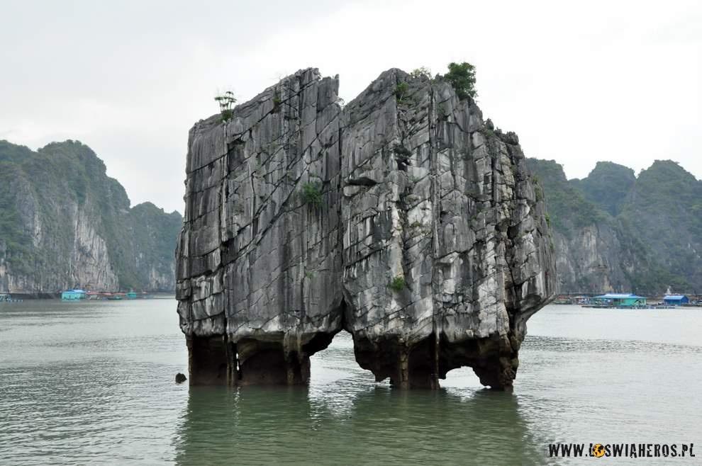 walczace_kurczaki_-_symbol_wietnamu_halong_bay